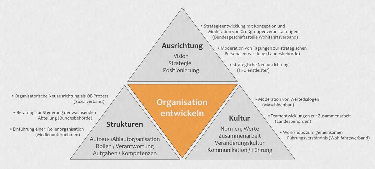 Grafik Situative Organisation